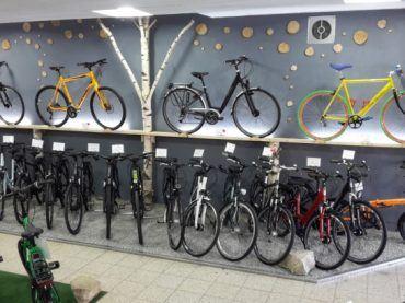 Fahräder im Laden